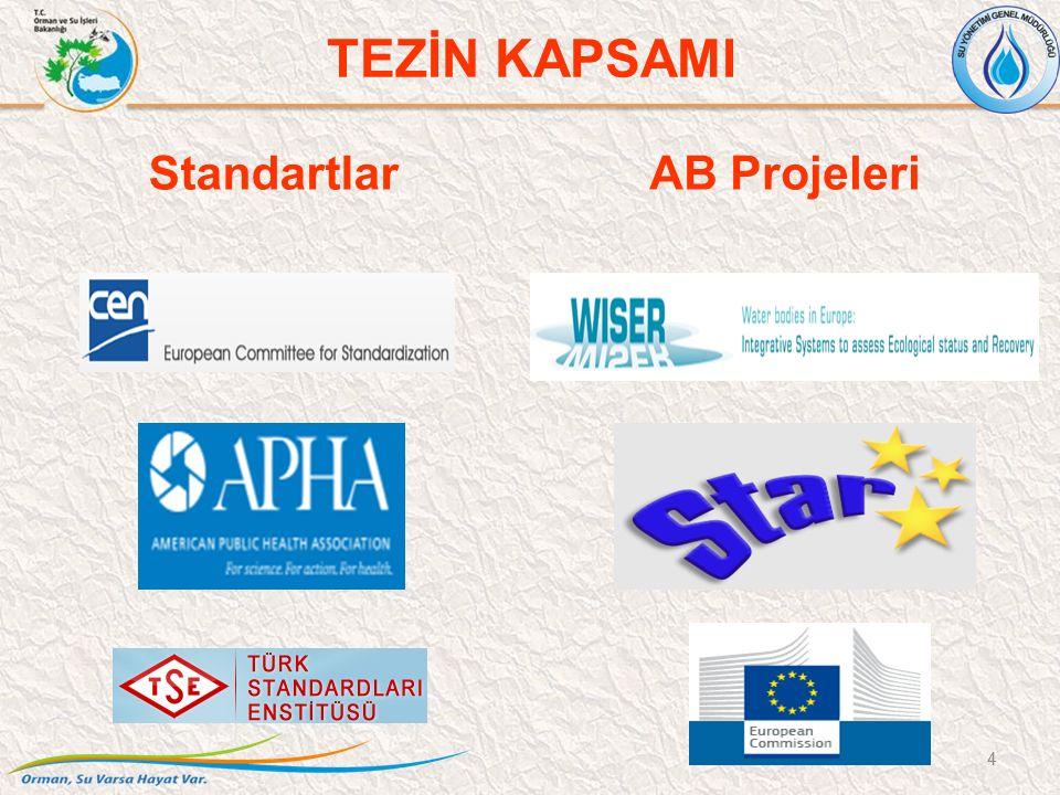 StandartlarAB Projeleri TEZİN KAPSAMI 4