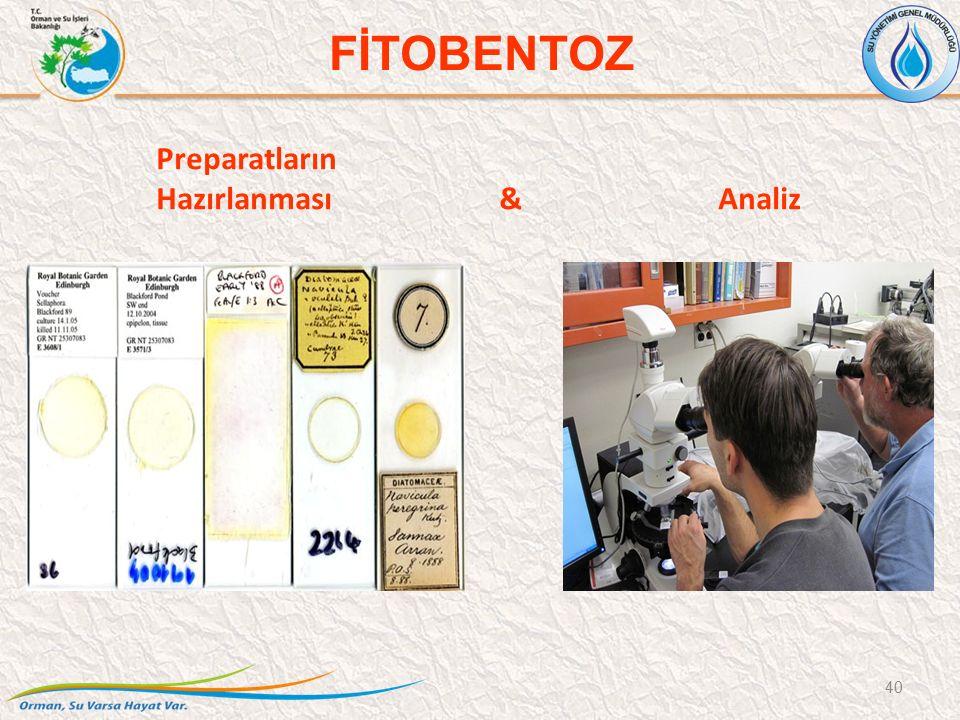 Preparatların Hazırlanması & Analiz 40 FİTOBENTOZ