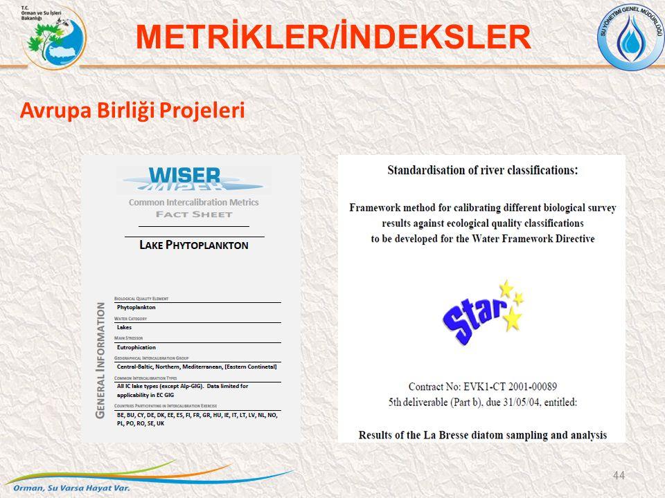 Avrupa Birliği Projeleri 44 METRİKLER/İNDEKSLER
