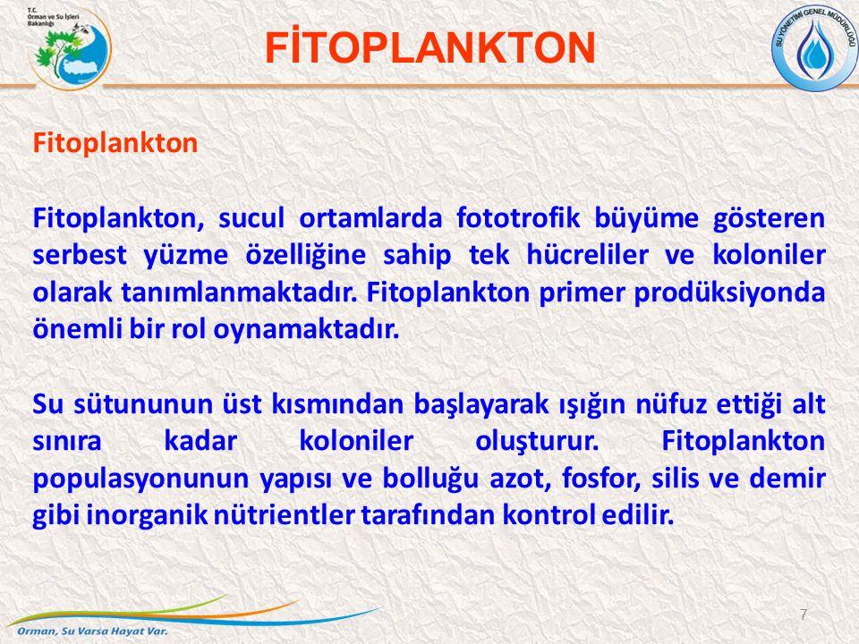 Fitoplankton Fitoplankton, sucul ortamlarda fototrofik büyüme gösteren serbest yüzme özelliğine sahip tek hücreliler ve koloniler olarak tanımlanmakta