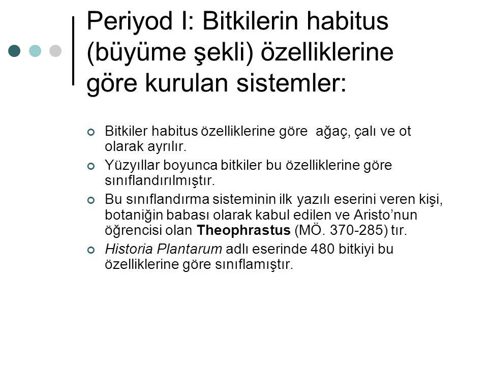 Periyod I: Bitkilerin habitus (büyüme şekli) özelliklerine göre kurulan sistemler: Bitkiler habitus özelliklerine göre ağaç, çalı ve ot olarak ayrılır