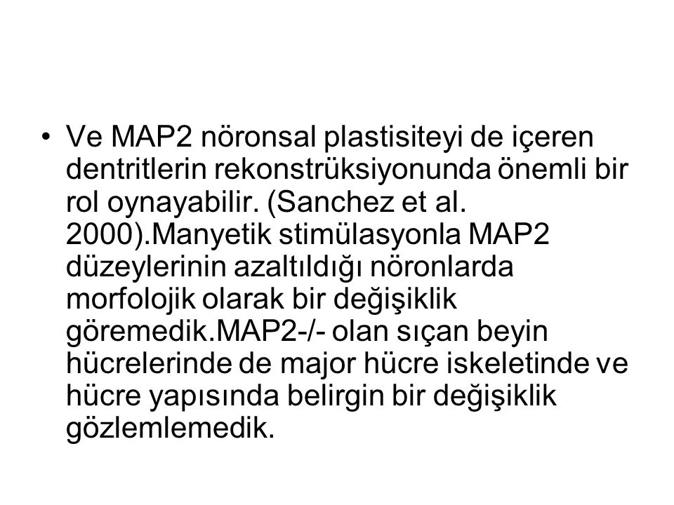 Ve MAP2 nöronsal plastisiteyi de içeren dentritlerin rekonstrüksiyonunda önemli bir rol oynayabilir.