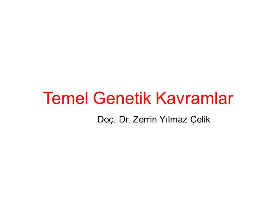 Temel Genetik Kavramlar Doç. Dr. Zerrin Yılmaz Çelik