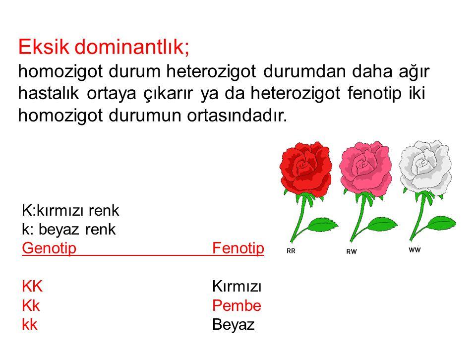 K:kırmızı renk k: beyaz renk GenotipFenotip KKKırmızı KkPembe kkBeyaz Eksik dominantlık; homozigot durum heterozigot durumdan daha ağır hastalık ortay