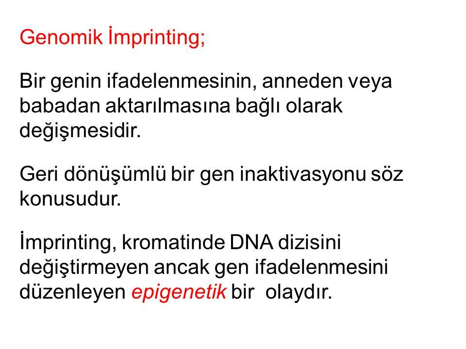 Genomik İmprinting; Bir genin ifadelenmesinin, anneden veya babadan aktarılmasına bağlı olarak değişmesidir. Geri dönüşümlü bir gen inaktivasyonu söz