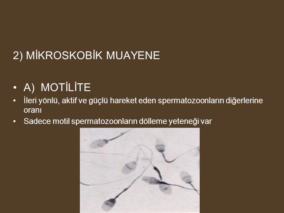 2) MİKROSKOBİK MUAYENE A) MOTİLİTE İleri yönlü, aktif ve güçlü hareket eden spermatozoonların diğerlerine oranı Sadece motil spermatozoonların dölleme yeteneği var