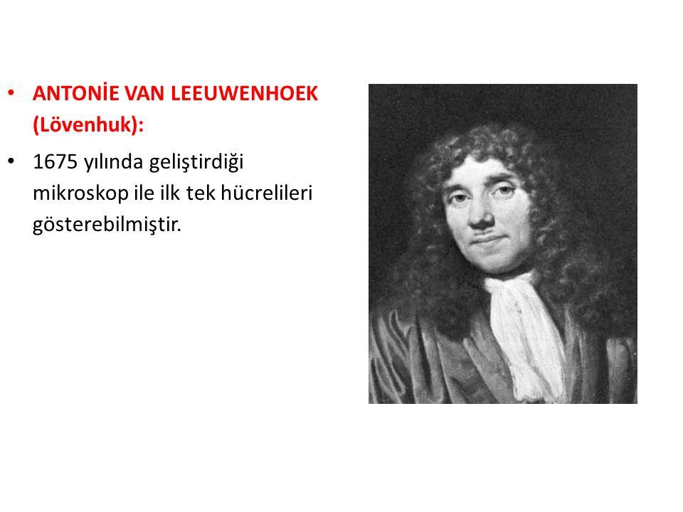 ANTONİE VAN LEEUWENHOEK (Lövenhuk): 1675 yılında geliştirdiği mikroskop ile ilk tek hücrelileri gösterebilmiştir.