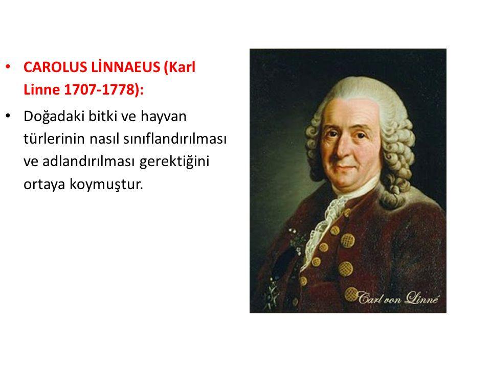 CAROLUS LİNNAEUS (Karl Linne 1707-1778): Doğadaki bitki ve hayvan türlerinin nasıl sınıflandırılması ve adlandırılması gerektiğini ortaya koymuştur.