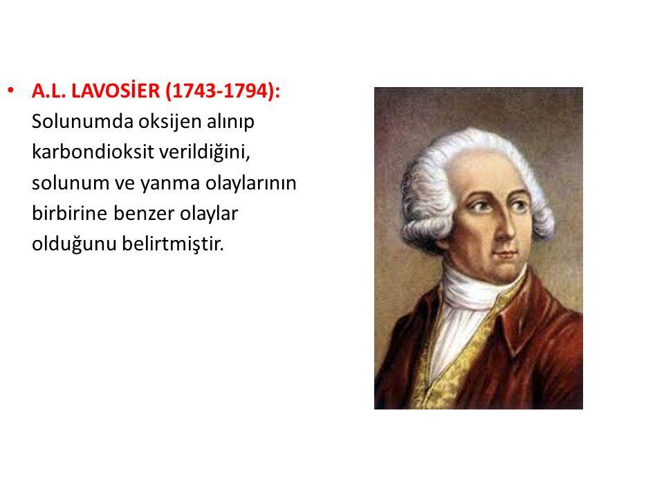 A.L. LAVOSİER (1743-1794): Solunumda oksijen alınıp karbondioksit verildiğini, solunum ve yanma olaylarının birbirine benzer olaylar olduğunu belirtmi