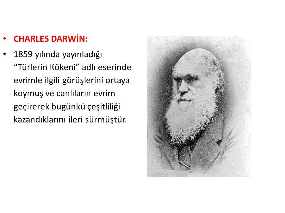 """CHARLES DARWİN: 1859 yılında yayınladığı """"Türlerin Kökeni"""" adlı eserinde evrimle ilgili görüşlerini ortaya koymuş ve canlıların evrim geçirerek bugünk"""