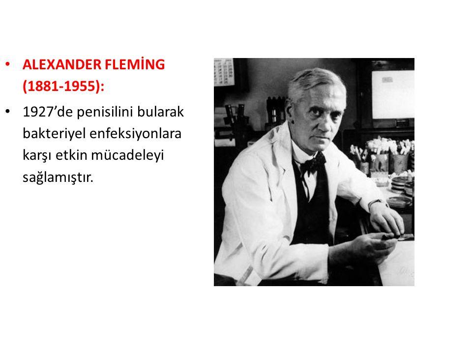 ALEXANDER FLEMİNG (1881-1955): 1927'de penisilini bularak bakteriyel enfeksiyonlara karşı etkin mücadeleyi sağlamıştır.