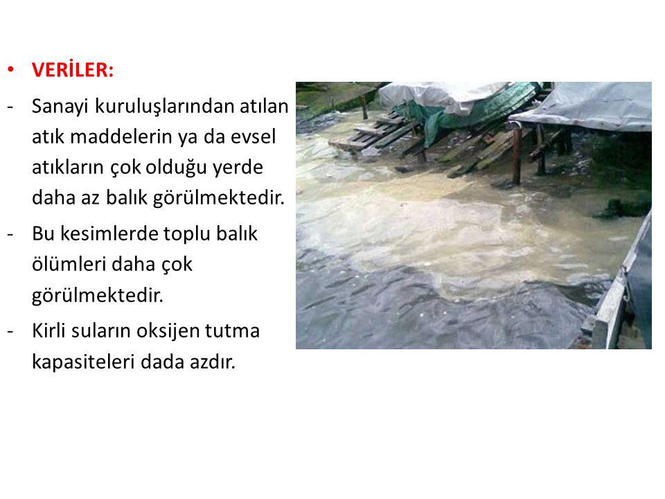 VERİLER: -Sanayi kuruluşlarından atılan atık maddelerin ya da evsel atıkların çok olduğu yerde daha az balık görülmektedir.