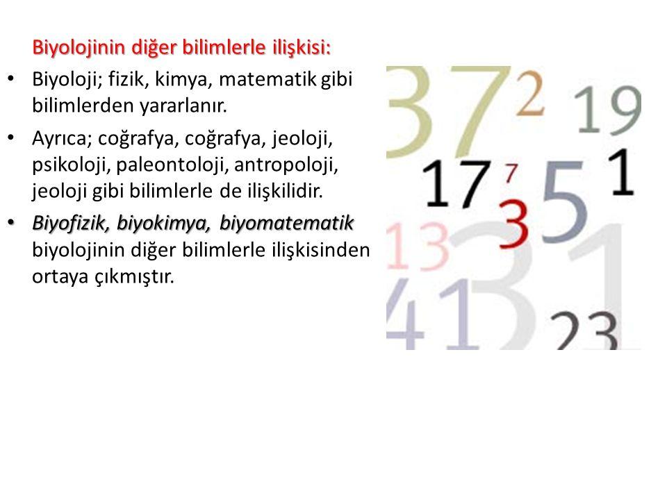 Biyolojinin diğer bilimlerle ilişkisi: Biyoloji; fizik, kimya, matematik gibi bilimlerden yararlanır.