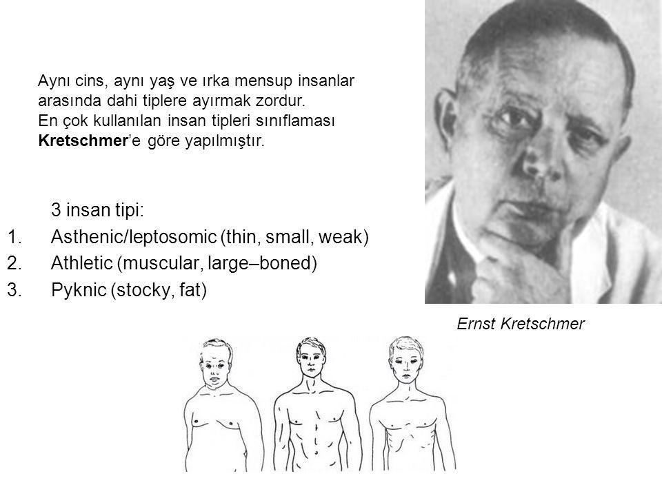 3 insan tipi: 1.Asthenic/leptosomic (thin, small, weak) 2.Athletic (muscular, large–boned) 3.Pyknic (stocky, fat) Aynı cins, aynı yaş ve ırka mensup insanlar arasında dahi tiplere ayırmak zordur.