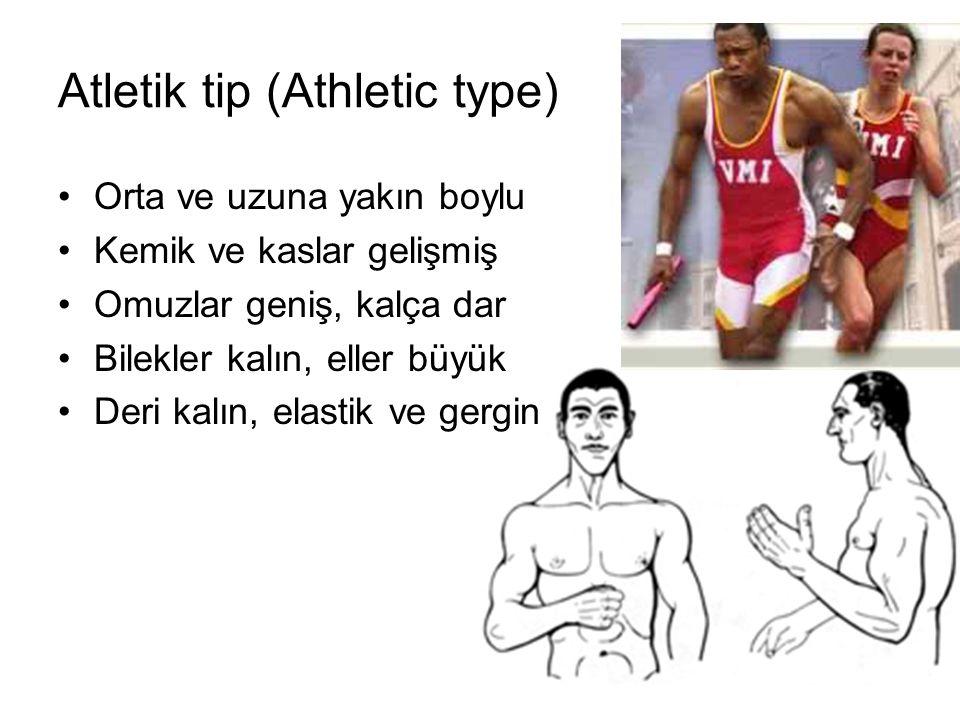 Atletik tip (Athletic type) Orta ve uzuna yakın boylu Kemik ve kaslar gelişmiş Omuzlar geniş, kalça dar Bilekler kalın, eller büyük Deri kalın, elastik ve gergin