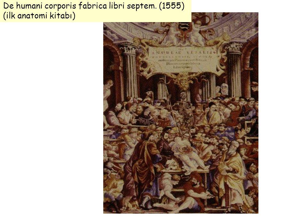 De humani corporis fabrica libri septem. (1555) (ilk anatomi kitabı)
