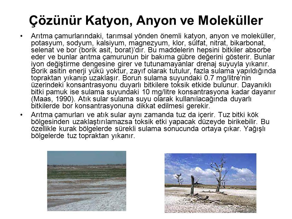 Çözünür Katyon, Anyon ve Moleküller Arıtma çamurlarındaki, tarımsal yönden önemli katyon, anyon ve moleküller, potasyum, sodyum, kalsiyum, magnezyum,