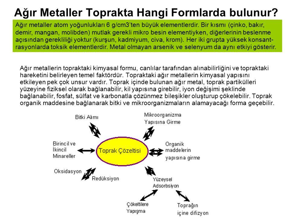 Ağır Metaller Toprakta Hangi Formlarda bulunur? Ağır metallerin topraktaki kimyasal formu, canlılar tarafından alınabilirliğini ve topraktaki hareketi
