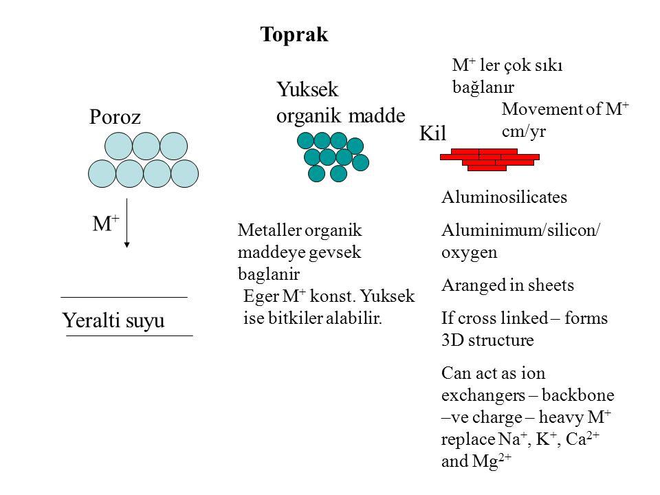 Poroz Yuksek organik madde Kil Yeralti suyu Metaller organik maddeye gevsek baglanir Eger M + konst. Yuksek ise bitkiler alabilir. M + ler çok sıkı ba