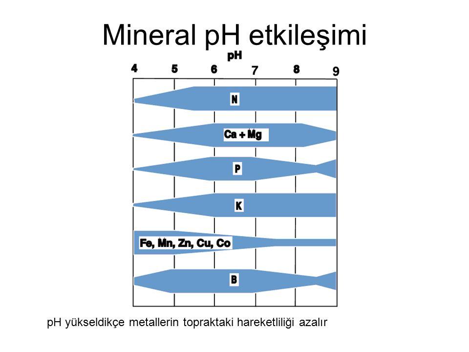Mineral pH etkileşimi pH yükseldikçe metallerin topraktaki hareketliliği azalır