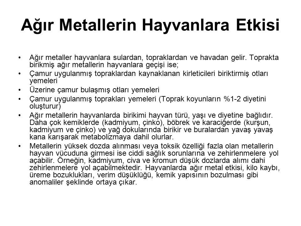 Ağır Metallerin Hayvanlara Etkisi Ağır metaller hayvanlara sulardan, topraklardan ve havadan gelir. Toprakta birikmiş ağır metallerin hayvanlara geçiş