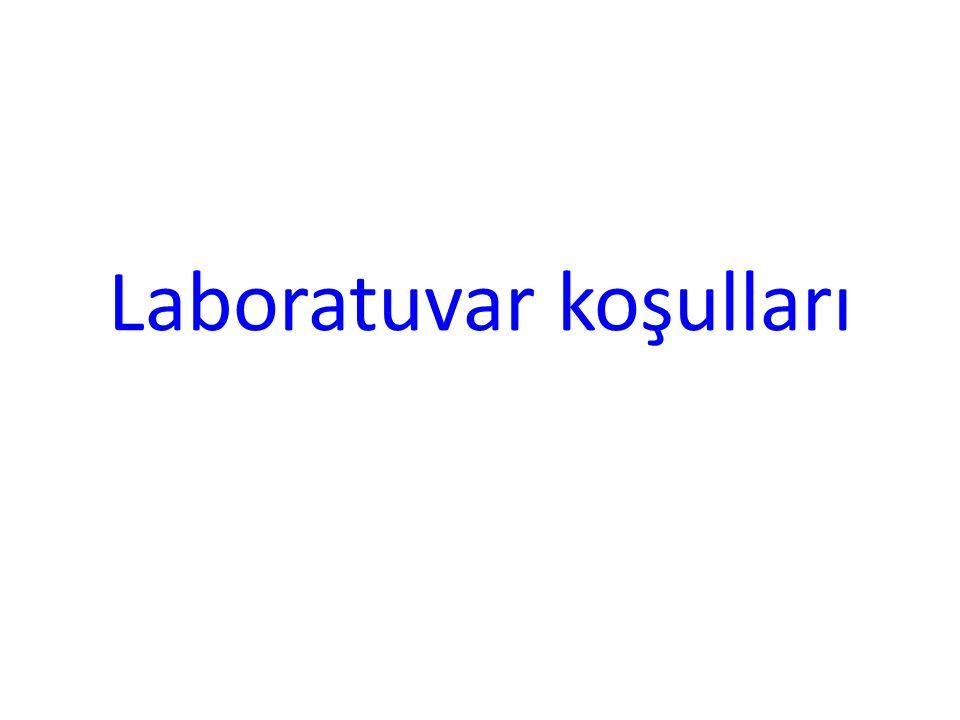 Laboratuvar koşulları