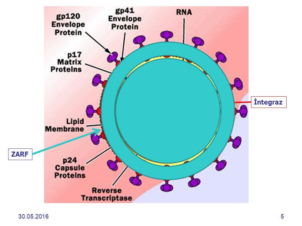 30.05.20162630.05.201626  Kan ve kan ürünleri ile bulaş  HIV yönünden tarama yapılmaya (1985) başlandığından beri bu yolla bulaş azalmıştır Kan ve KÜ transfüzyonu Kan ve KÜ transfüzyonu Organ transplantasyonu Organ transplantasyonu YılTestRisk 1996p24 antijeni1/200.000-1/ 2.000.000 2002Nukleik asit testleri (12 gün)1/ 2.135.000 Kornea ve işlenmiş dokularlaBulaş riski yok