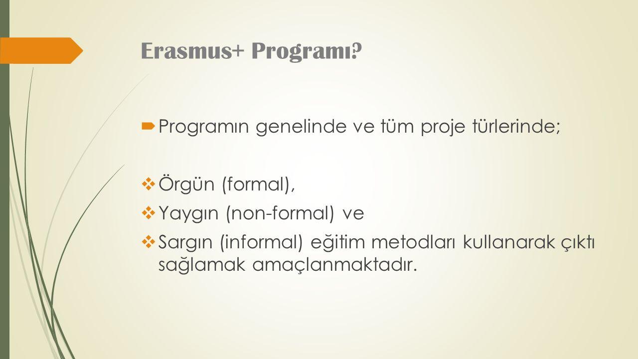 Erasmus+ Programı.