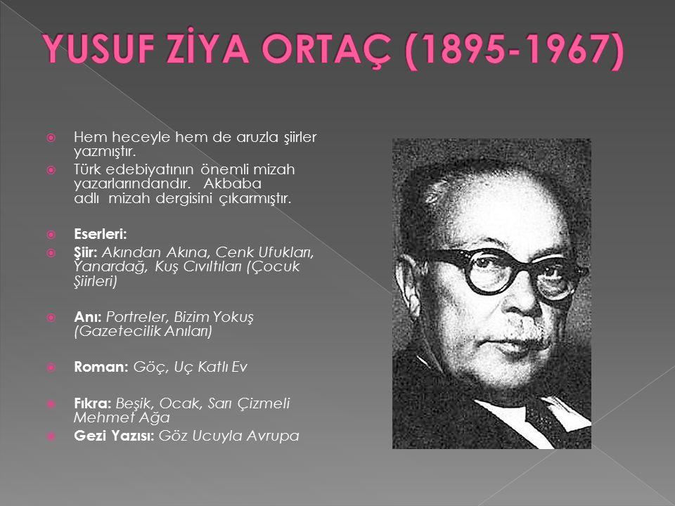  Hem heceyle hem de aruzla şiirler yazmıştır.  Türk edebiyatının önemli mizah yazarlarındandır. Akbaba adlı mizah dergisini çıkarmıştır.  Eserleri: