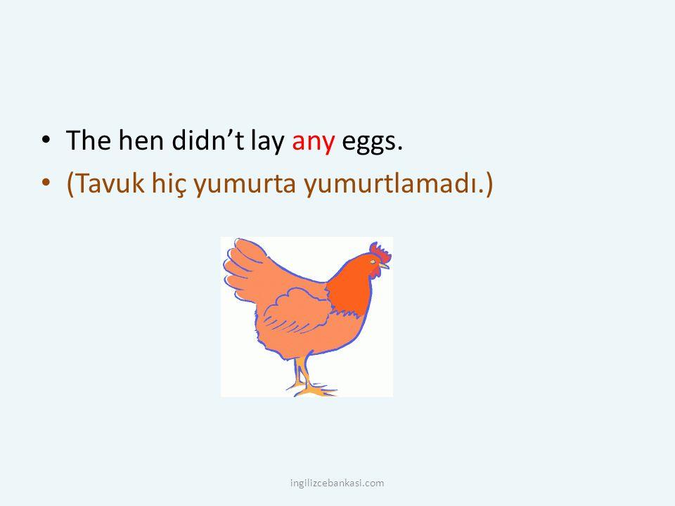 The hen didn't lay any eggs. (Tavuk hiç yumurta yumurtlamadı.) ingilizcebankasi.com