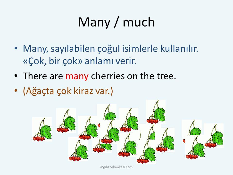 Many / much Many, sayılabilen çoğul isimlerle kullanılır. «Çok, bir çok» anlamı verir. There are many cherries on the tree. (Ağaçta çok kiraz var.) in