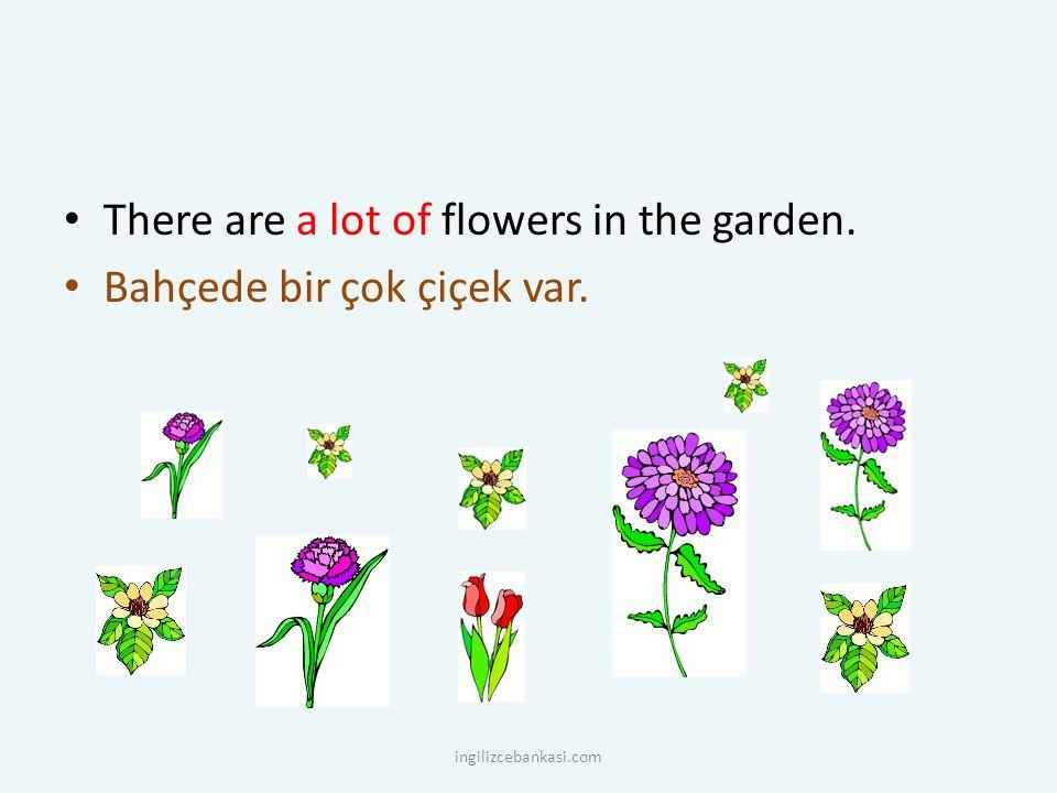 There are a lot of flowers in the garden. Bahçede bir çok çiçek var. ingilizcebankasi.com