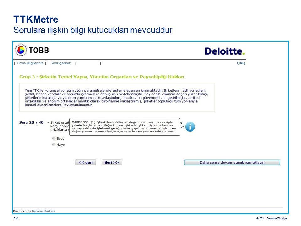 © 2011 Deloitte Türkiye 12 TTKMetre Sorulara ilişkin bilgi kutucukları mevcuddur