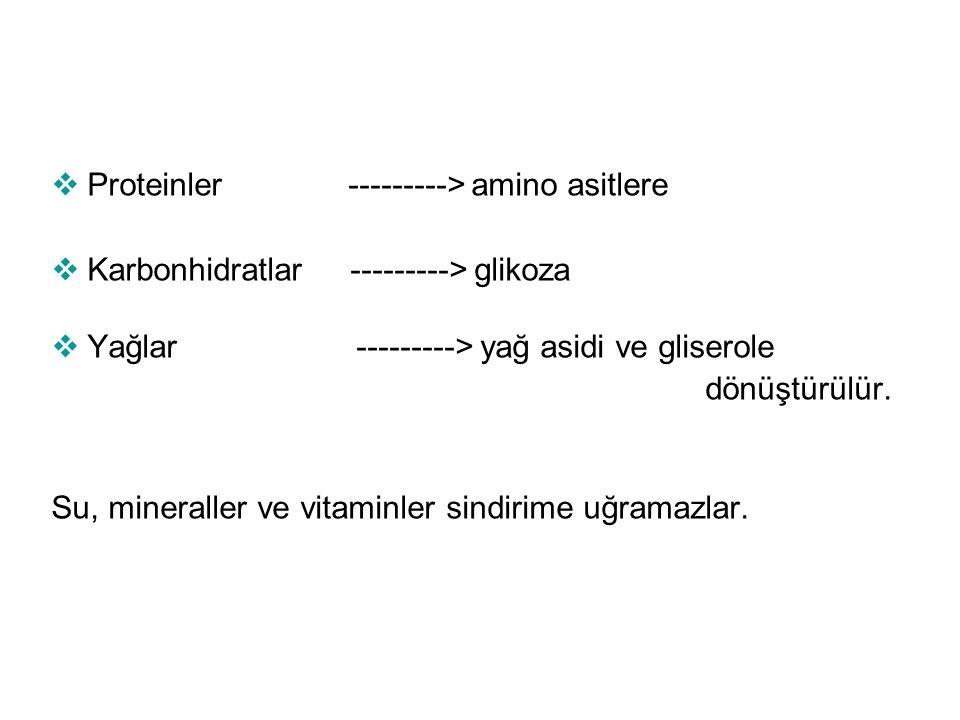  Proteinler ---------> amino asitlere  Karbonhidratlar ---------> glikoza  Yağlar ---------> yağ asidi ve gliserole dönüştürülür. Su, mineraller ve
