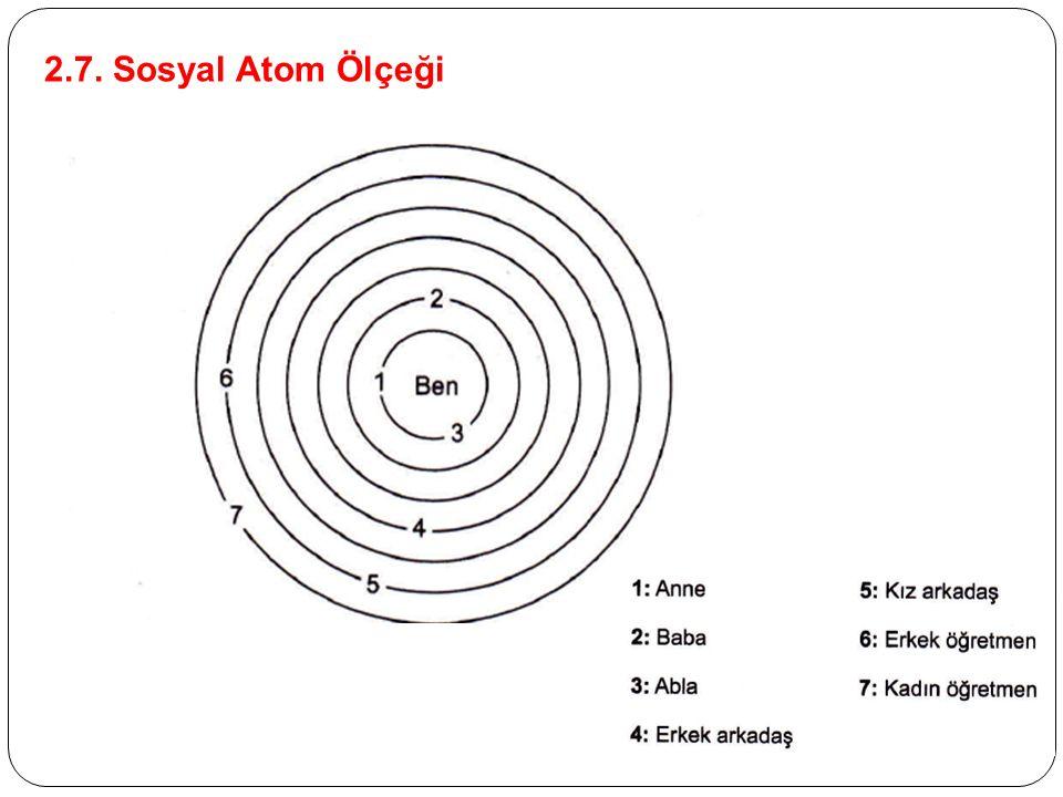2.7. Sosyal Atom Ölçeği