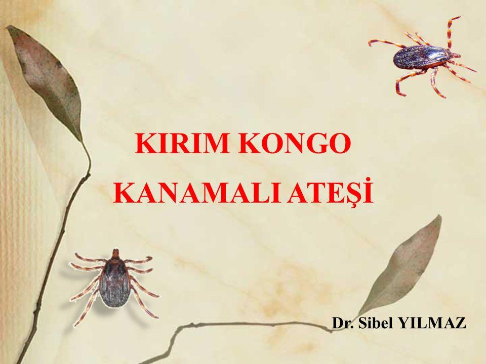 KIRIM KONGO KANAMALI ATEŞİ Dr. Sibel YILMAZ