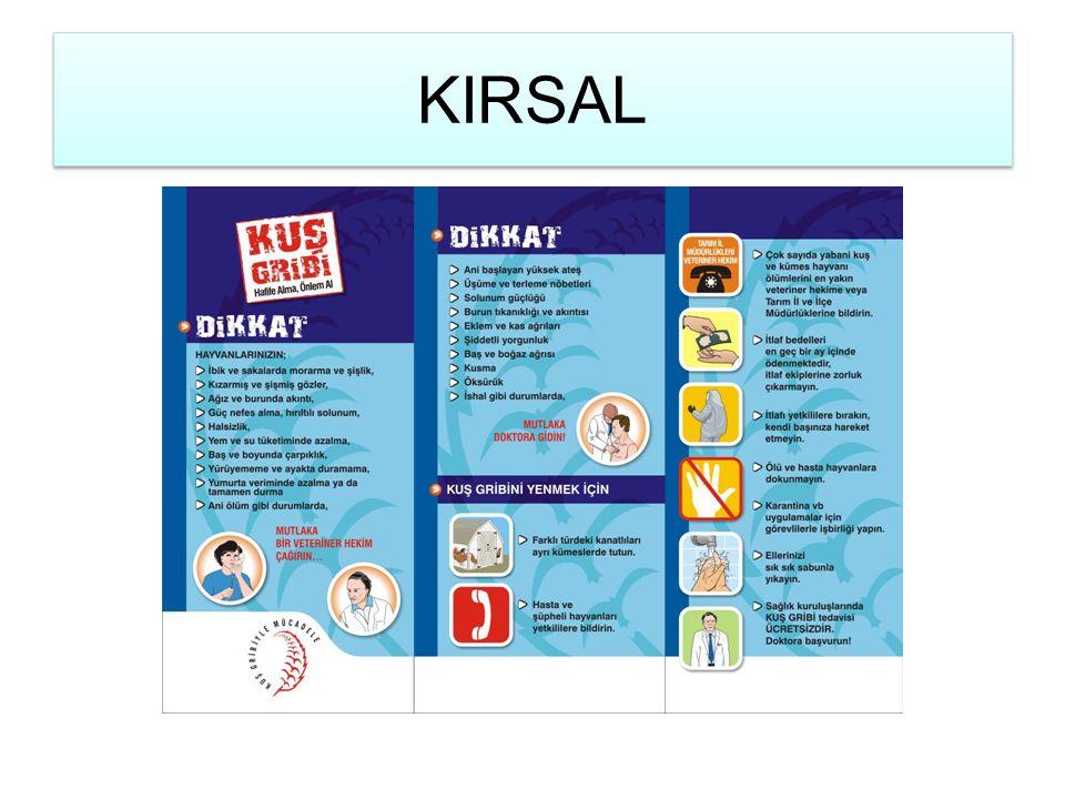 KIRSAL