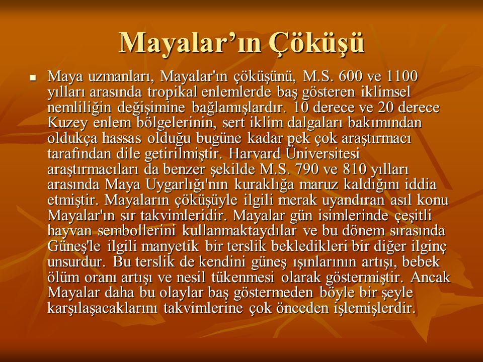 Mayalar'ın Çöküşü Maya uzmanları, Mayalar ın çöküşünü, M.S.