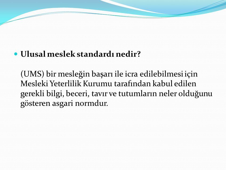 Ulusal meslek standardı nedir.