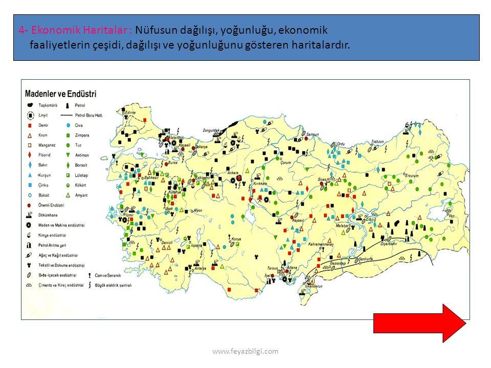 www.feyazbilgi.com