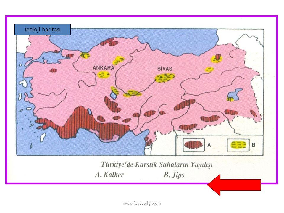 www.feyazbilgi.com 2- Harita Alanı Hesaplama HA = Gerçek alan ( Ölçek payda )² Örnek : Gerçekte 60 km² olan bir göl 1/ 100.000 ölçekli bir haritada kaç cm² ile gösterilir .