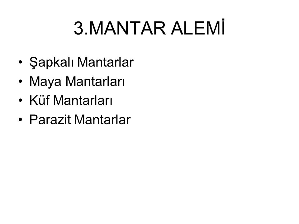 3.MANTAR ALEMİ Şapkalı Mantarlar Maya Mantarları Küf Mantarları Parazit Mantarlar
