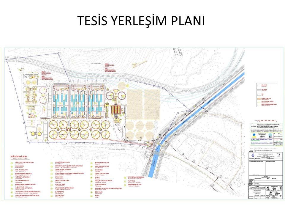 TESİS YERLEŞİM PLANI