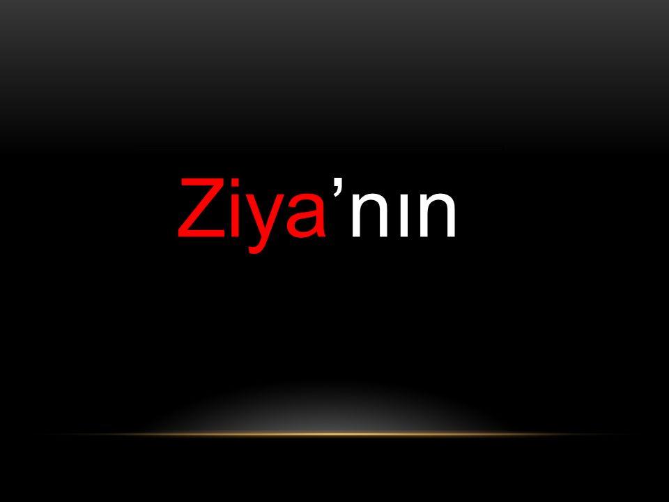 Ziya'nın