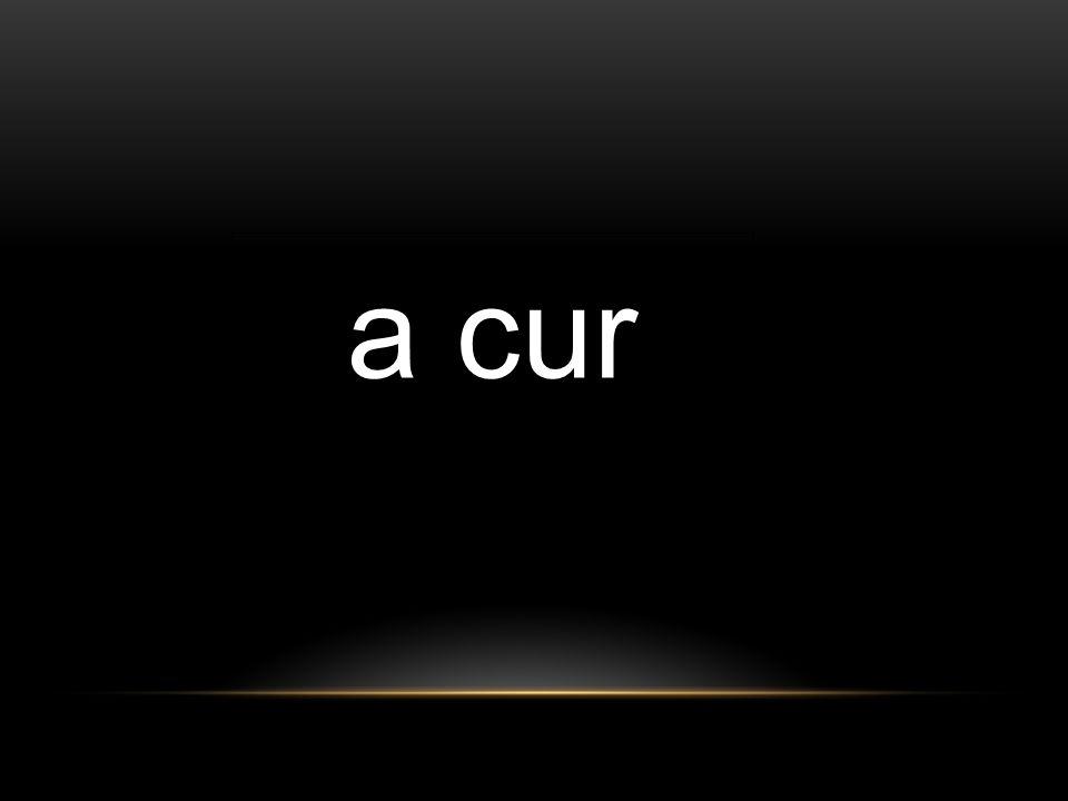 a cur