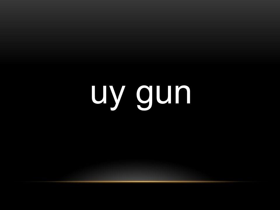 uy gun