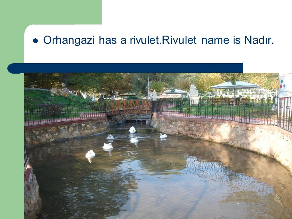 Orhangazi has a rivulet.Rivulet name is Nadır.