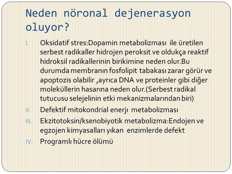 Neden nöronal dejenerasyon oluyor? I. Oksidatif stres:Dopamin metabolizması ile üretilen serbest radikaller hidrojen peroksit ve oldukça reaktif hidro