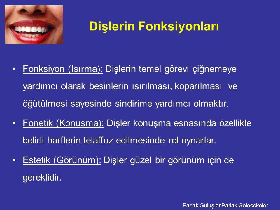 Parlak Gülüşler Parlak Gelecekeler Dişlerin Fonksiyonları Fonksiyon (Isırma): Dişlerin temel görevi çiğnemeye yardımcı olarak besinlerin ısırılması, k