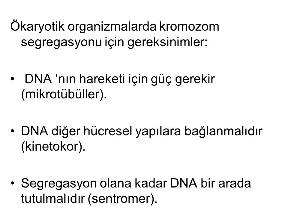 Ökaryotik organizmalarda kromozom segregasyonu için gereksinimler: DNA 'nın hareketi için güç gerekir (mikrotübüller). DNA diğer hücresel yapılara bağ